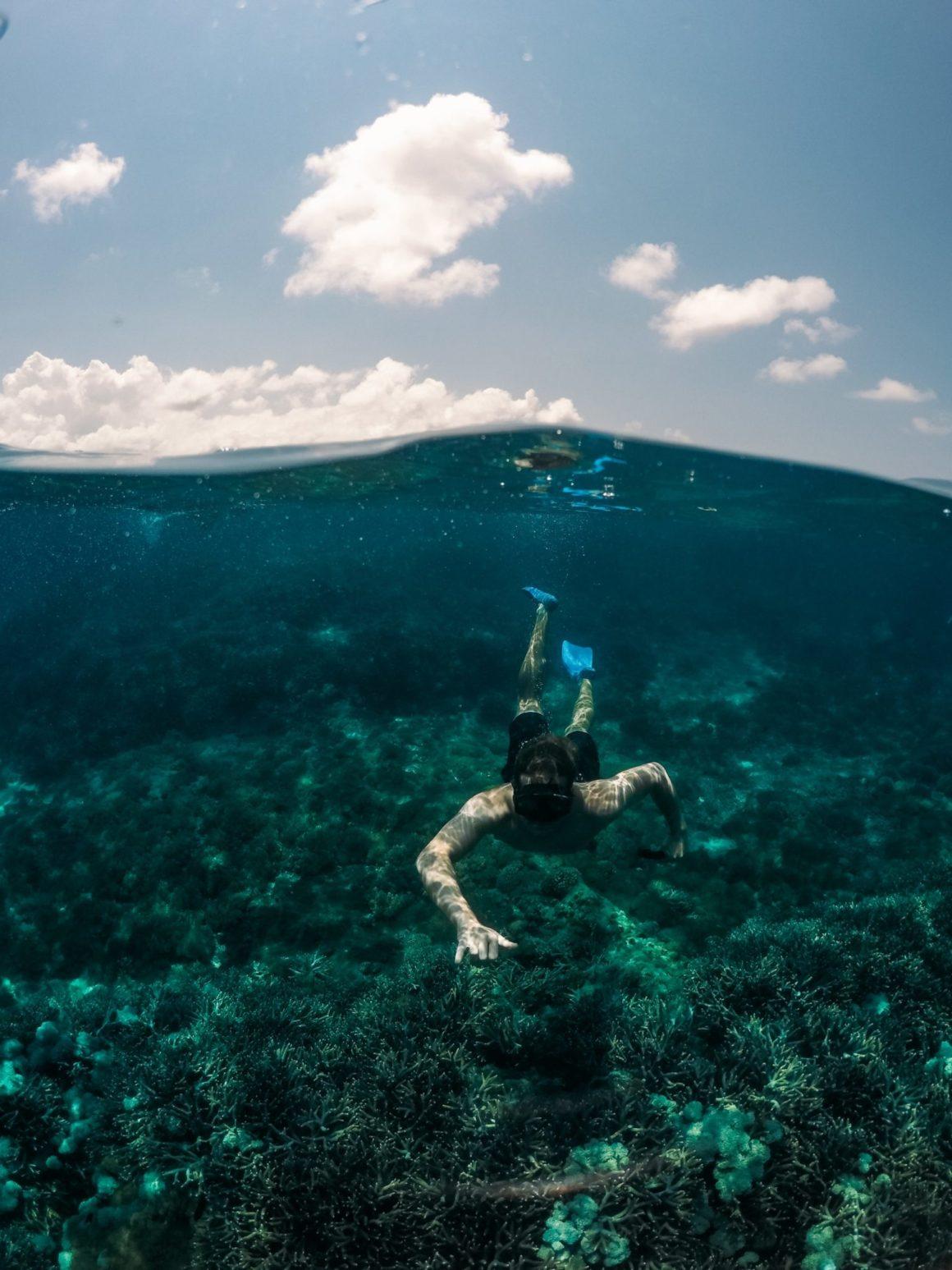 La Grande barrière de corail victime du surtourisme