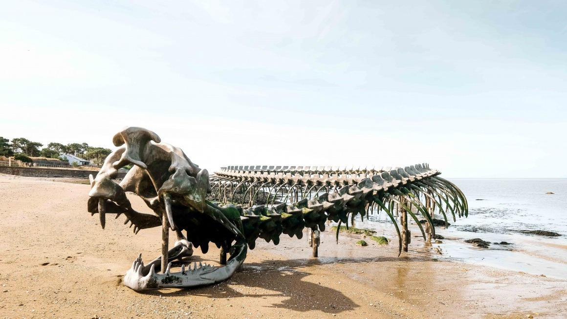 Serpent d'ocean Saint-Brevin vacances Loire-Atlantique